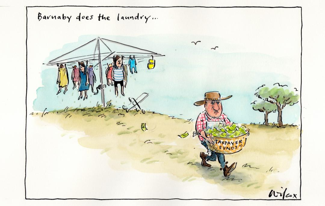 Hung Out to Dry by Cathy Wilcox
